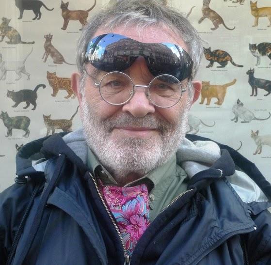P1030356-3 solbriller katte-tapet_Arrabal